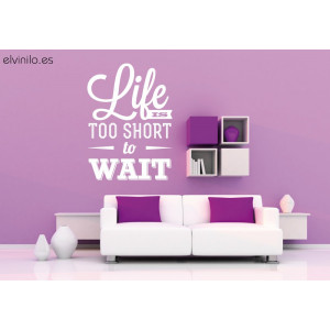 Vinilo life is too short